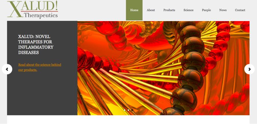 portfolio xalud home page